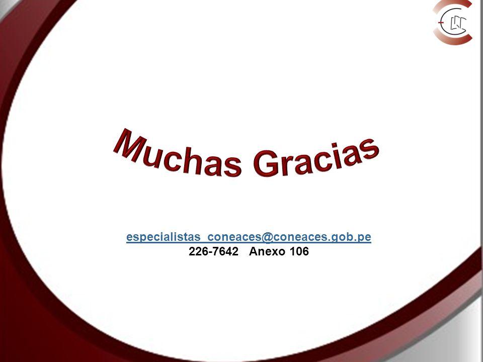 Muchas Gracias especialistas_coneaces@coneaces.gob.pe