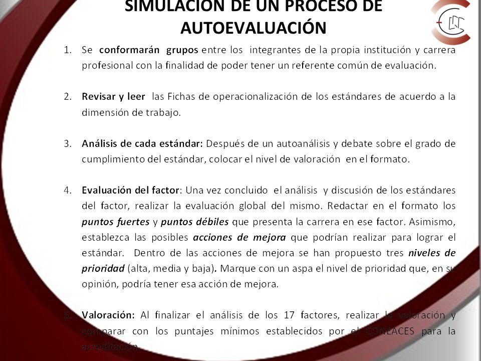 SIMULACIÓN DE UN PROCESO DE AUTOEVALUACIÓN