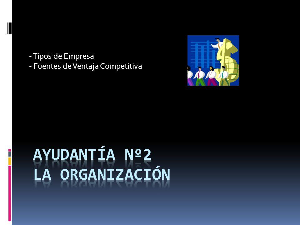Ayudantía Nº2 La Organización