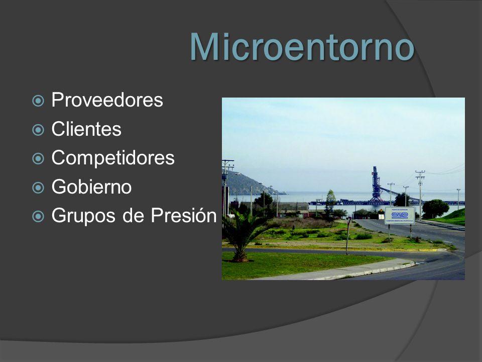 Microentorno Proveedores Clientes Competidores Gobierno