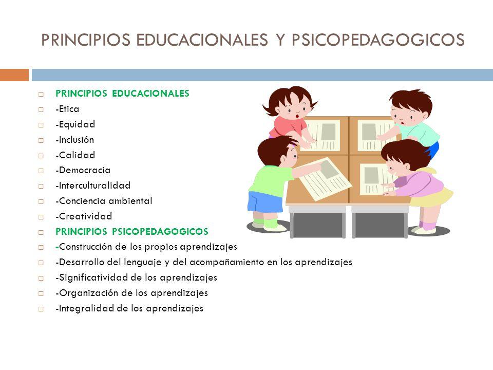 PRINCIPIOS EDUCACIONALES Y PSICOPEDAGOGICOS