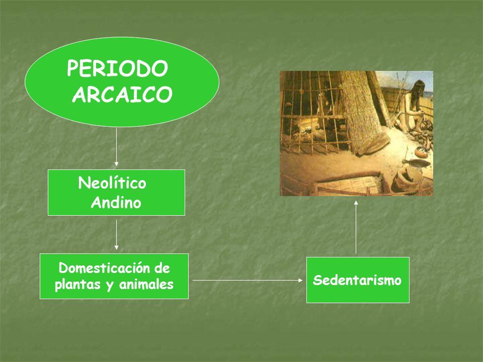 PERIODO ARCAICO Neolítico Andino Domesticación de plantas y animales