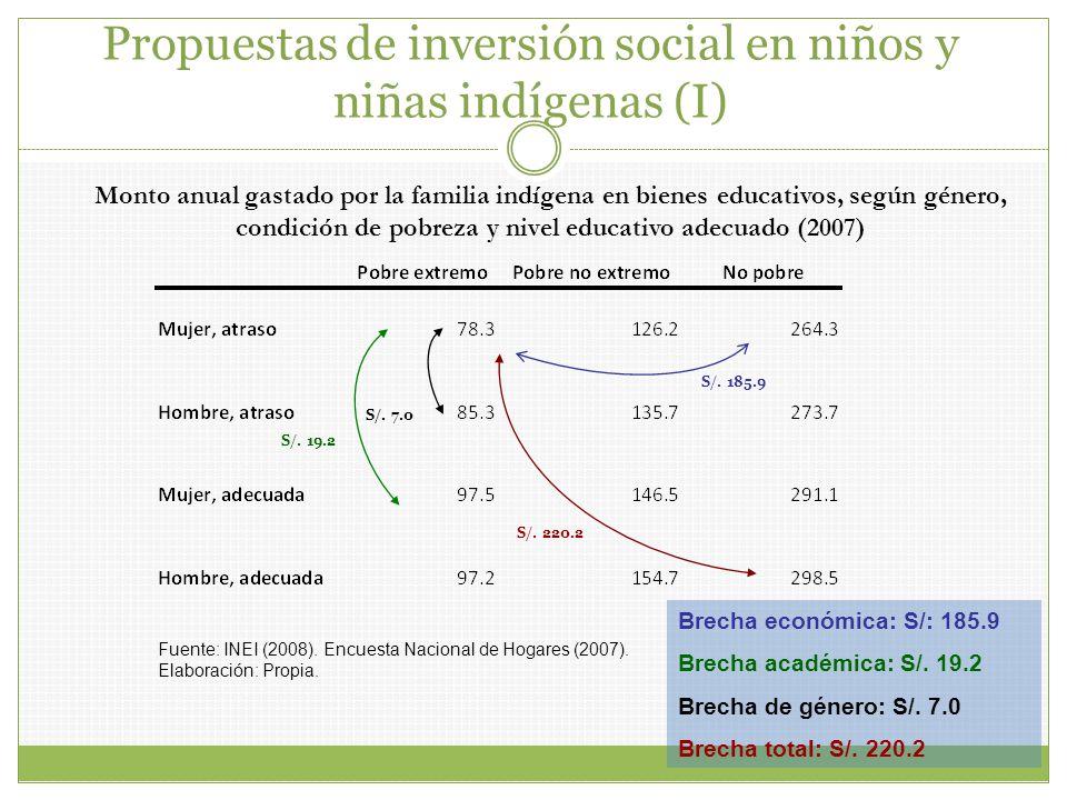 Propuestas de inversión social en niños y niñas indígenas (I)
