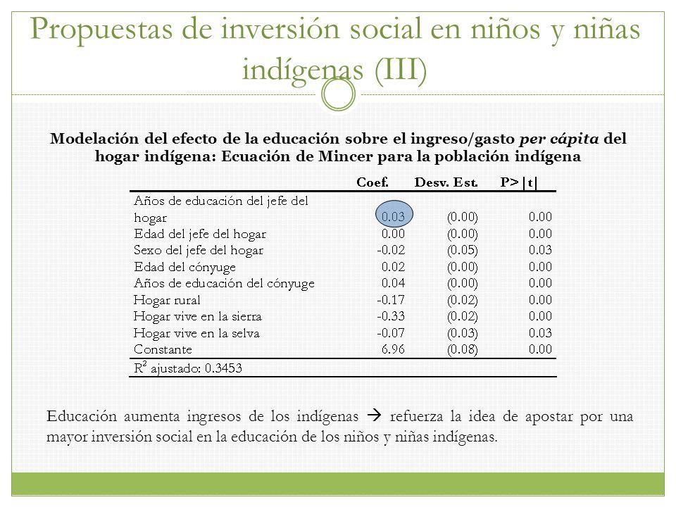 Propuestas de inversión social en niños y niñas indígenas (III)