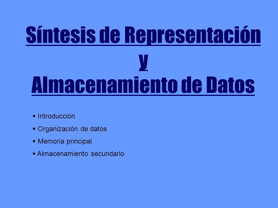 Síntesis de Representación y Almacenamiento de Datos