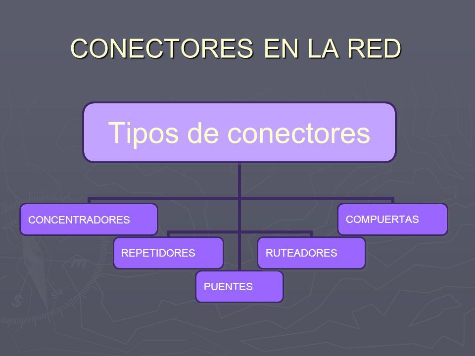 CONECTORES EN LA RED