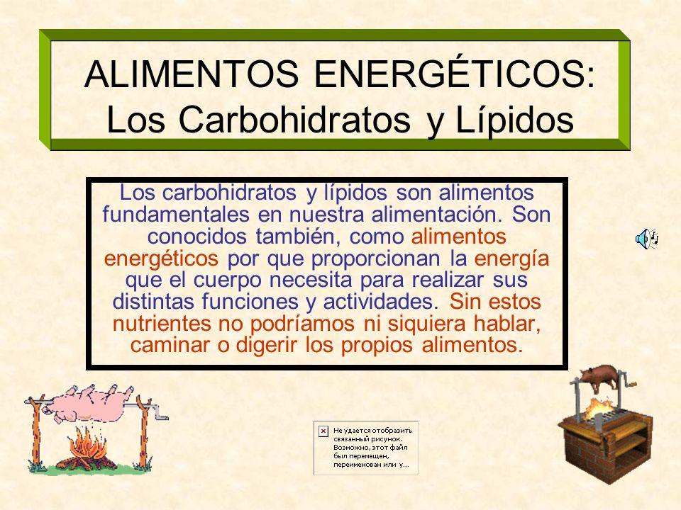 ALIMENTOS ENERGÉTICOS: Los Carbohidratos y Lípidos