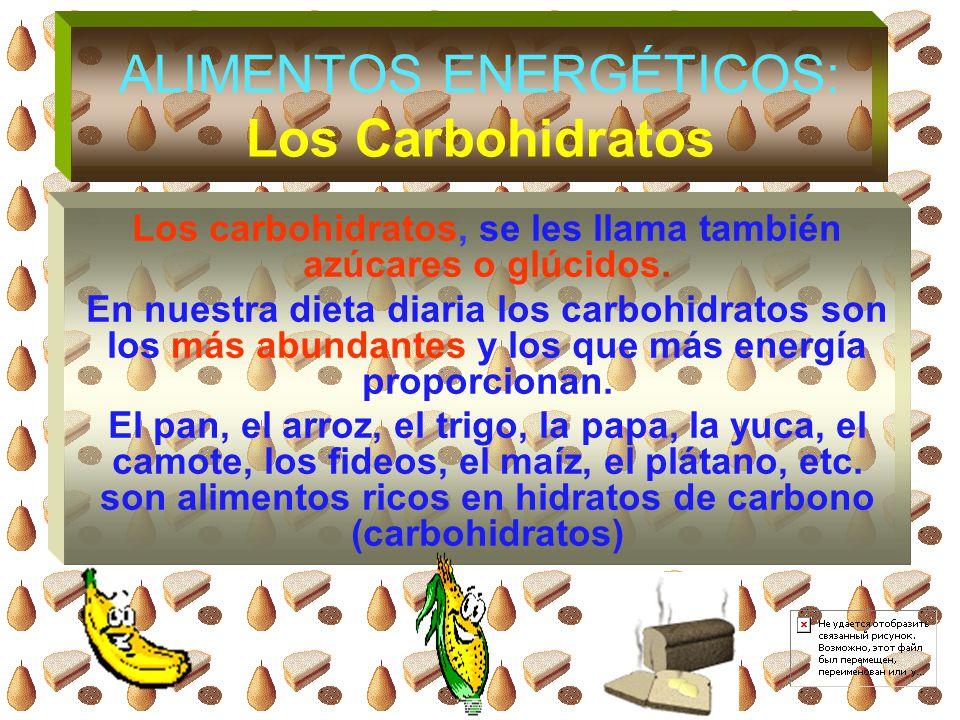 ALIMENTOS ENERGÉTICOS: Los Carbohidratos