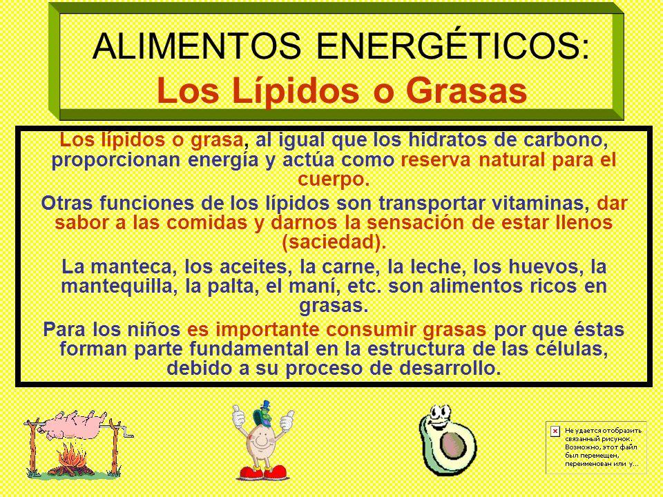 ALIMENTOS ENERGÉTICOS: Los Lípidos o Grasas