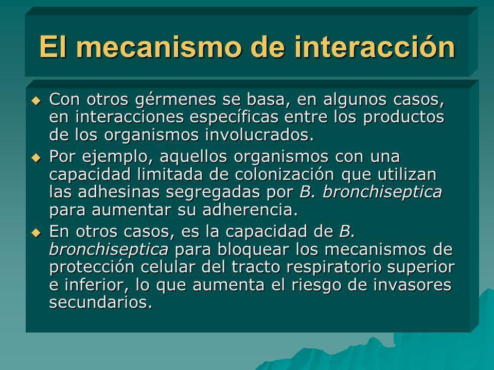 El mecanismo de interacción