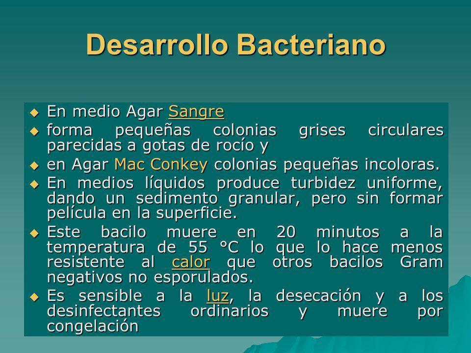 Desarrollo Bacteriano