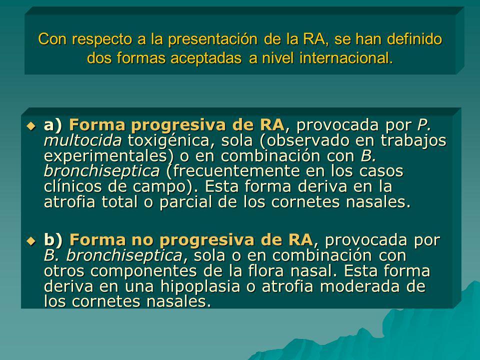 Con respecto a la presentación de la RA, se han definido dos formas aceptadas a nivel internacional.