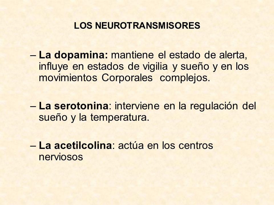 LOS NEUROTRANSMISORES