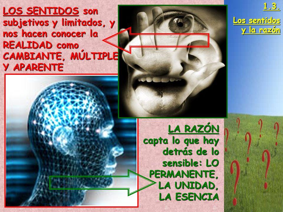 1.3. Los sentidos y la razón. LOS SENTIDOS son subjetivos y limitados, y nos hacen conocer la REALIDAD como CAMBIANTE, MÚLTIPLE Y APARENTE.