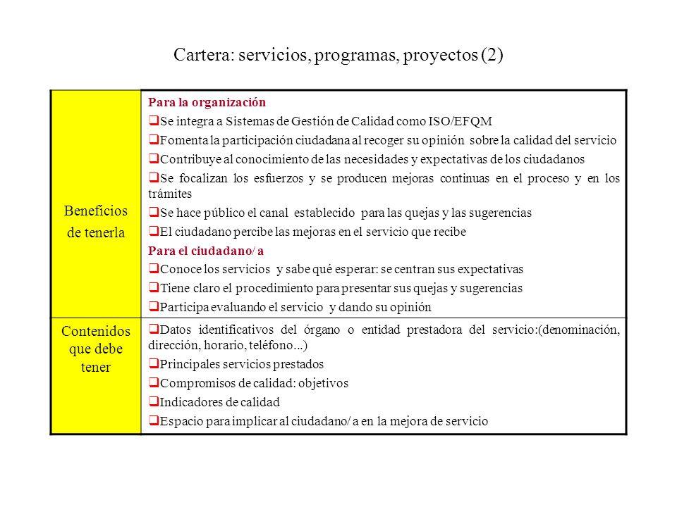 Cartera: servicios, programas, proyectos (2)