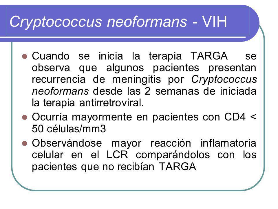 Cryptococcus neoformans - VIH