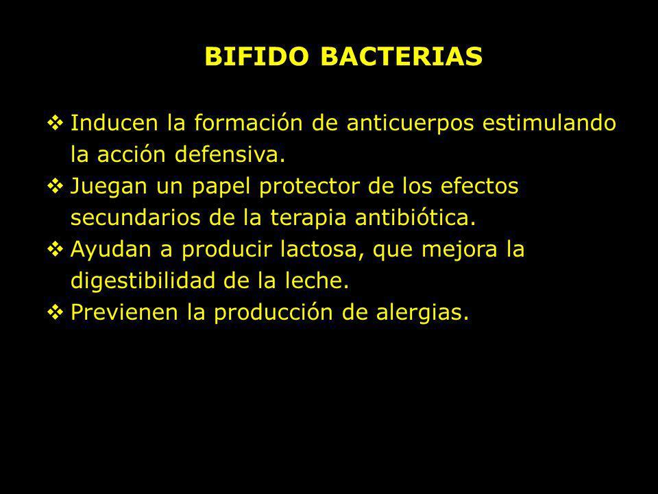 BIFIDO BACTERIAS Inducen la formación de anticuerpos estimulando la acción defensiva.