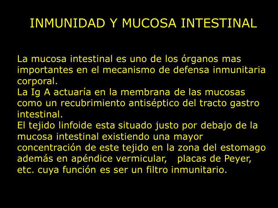 INMUNIDAD Y MUCOSA INTESTINAL