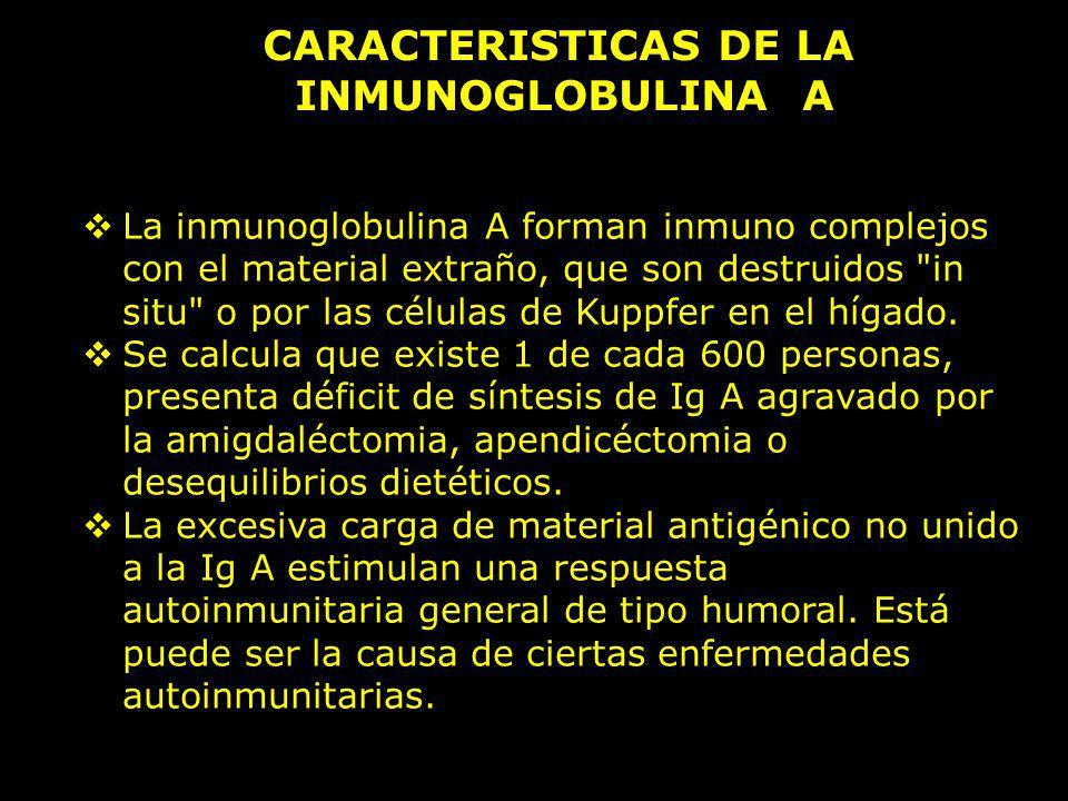 CARACTERISTICAS DE LA INMUNOGLOBULINA A