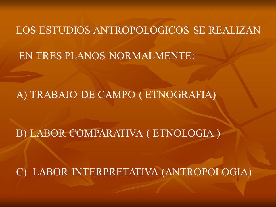 LOS ESTUDIOS ANTROPOLOGICOS SE REALIZAN