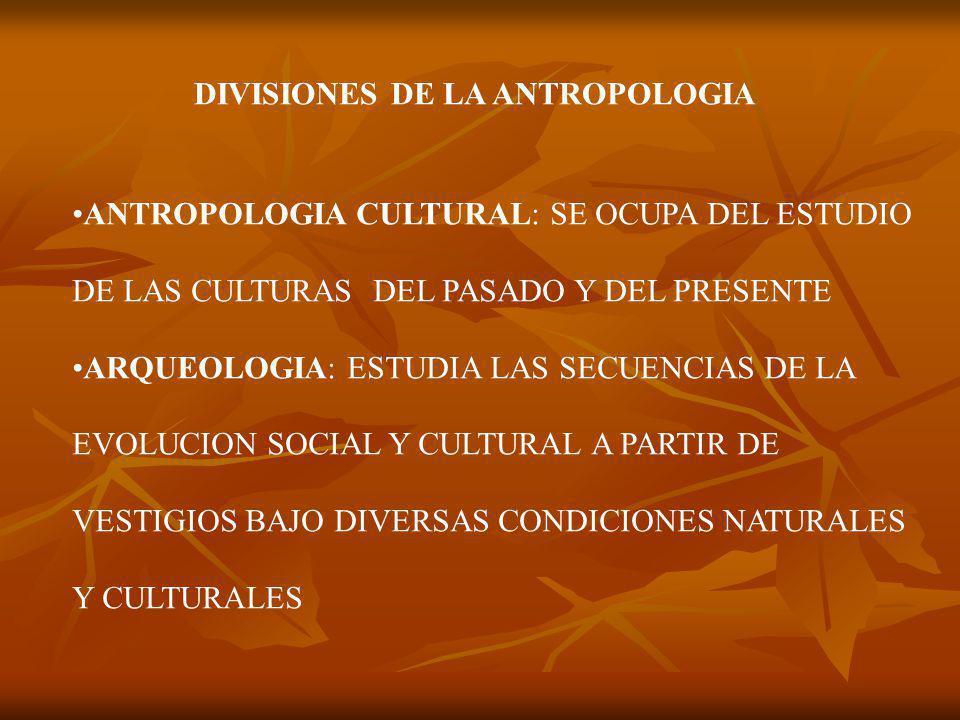 DIVISIONES DE LA ANTROPOLOGIA