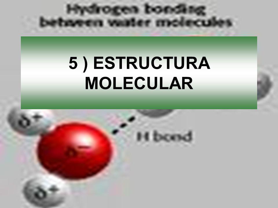5 ) ESTRUCTURA MOLECULAR