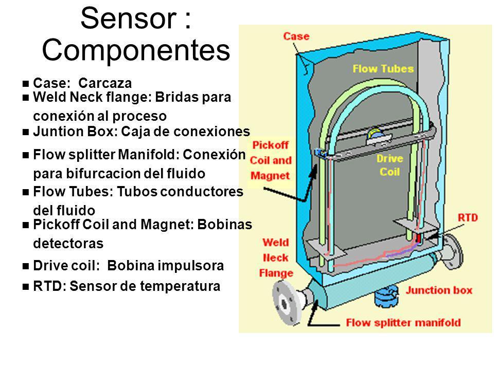 Sensor : Componentes Case: Carcaza Weld Neck flange: Bridas para
