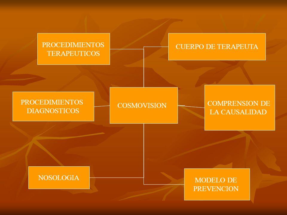 PROCEDIMIENTOS TERAPEUTICOS. CUERPO DE TERAPEUTA. COMPRENSION DE. LA CAUSALIDAD. COSMOVISION. PROCEDIMIENTOS.