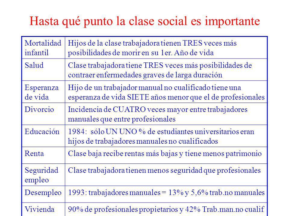 Hasta qué punto la clase social es importante