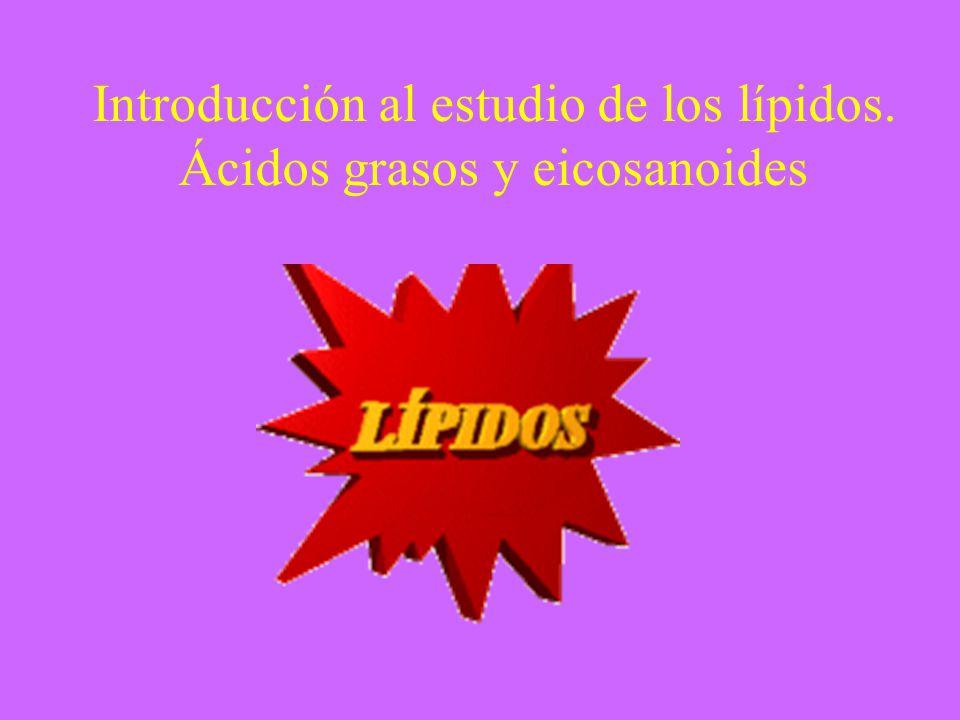 Introducción al estudio de los lípidos. Ácidos grasos y eicosanoides