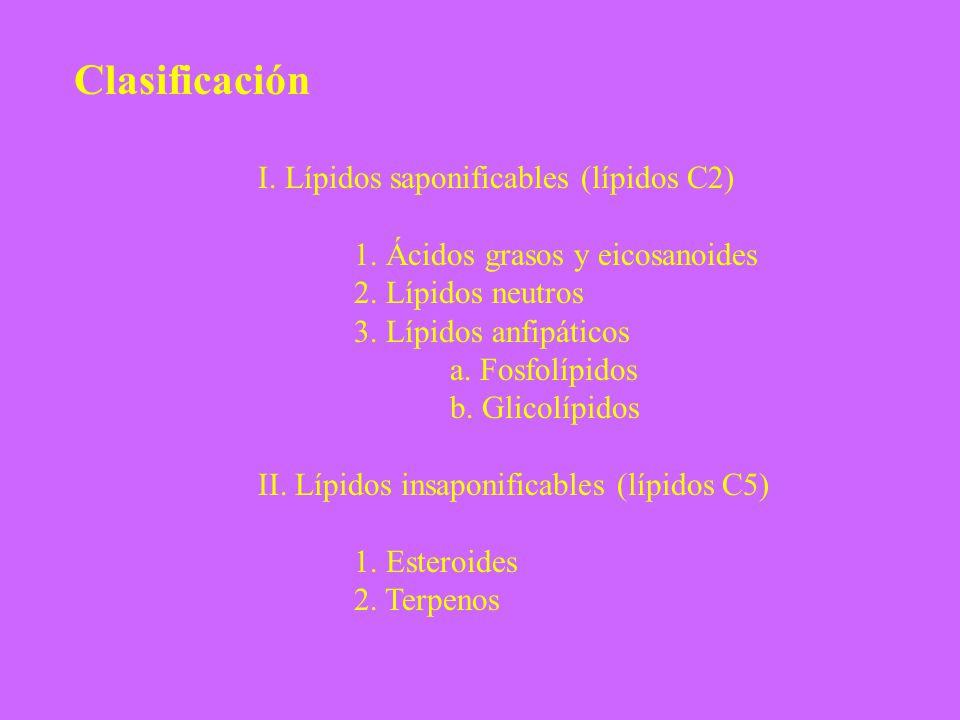 Clasificación I. Lípidos saponificables (lípidos C2)