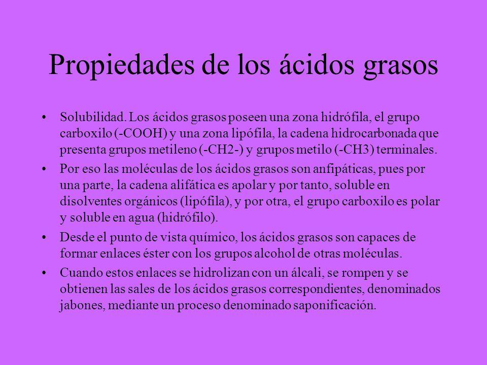 Propiedades de los ácidos grasos