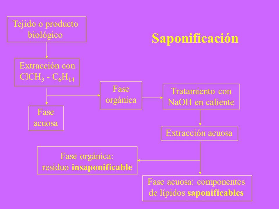Saponificación Tejido o producto biológico Extracción con