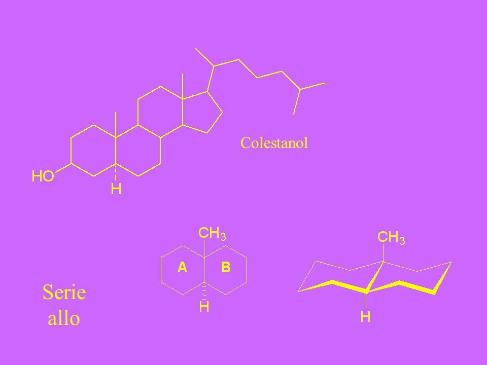 Colestanol Serie allo