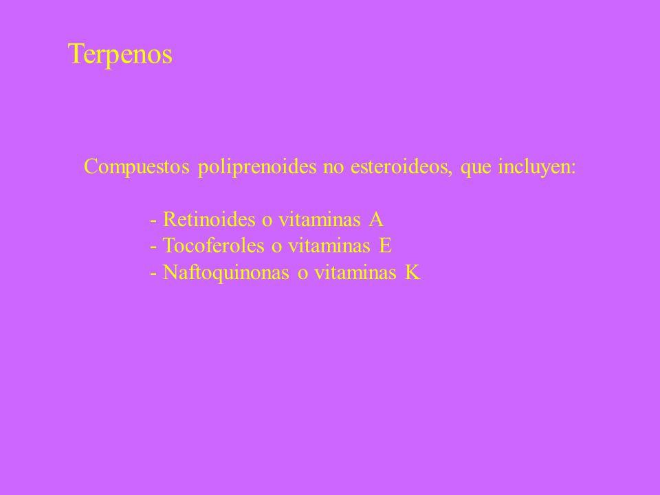 Terpenos Compuestos poliprenoides no esteroideos, que incluyen: