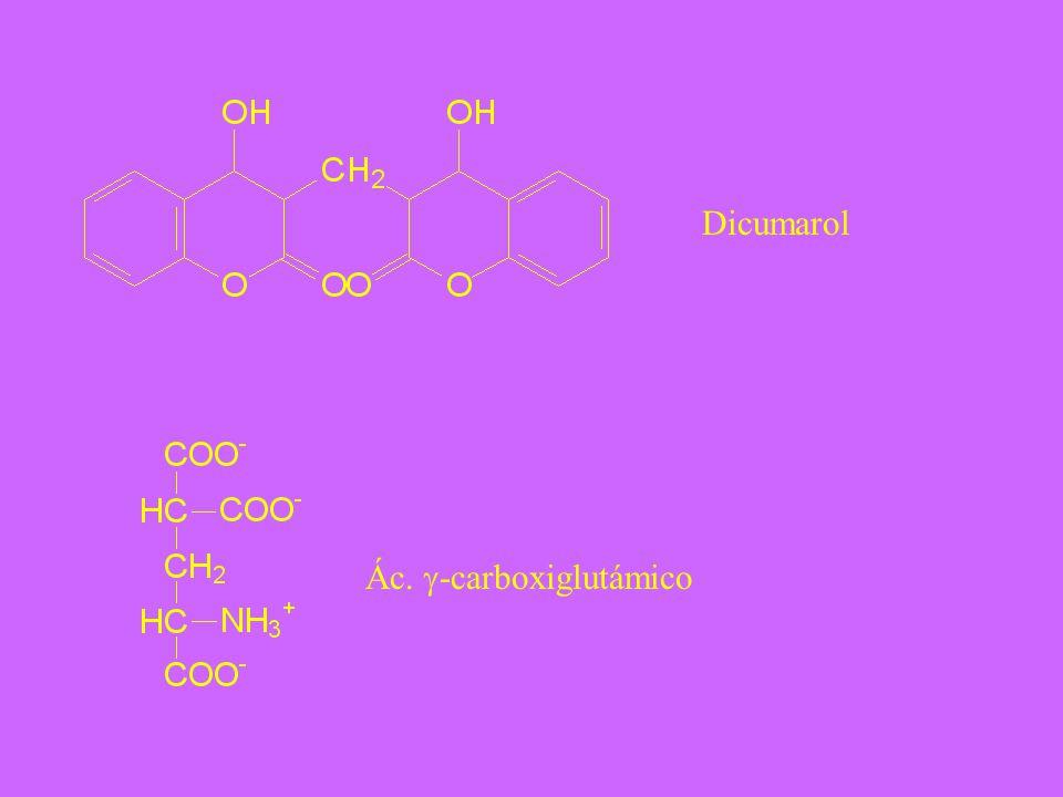 Dicumarol Ác. g-carboxiglutámico