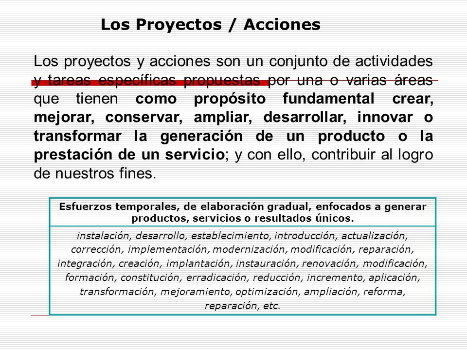 Los Proyectos / Acciones