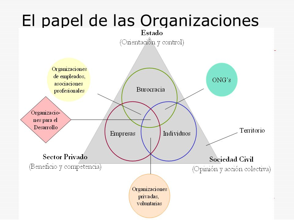El papel de las Organizaciones para el Desarrollo
