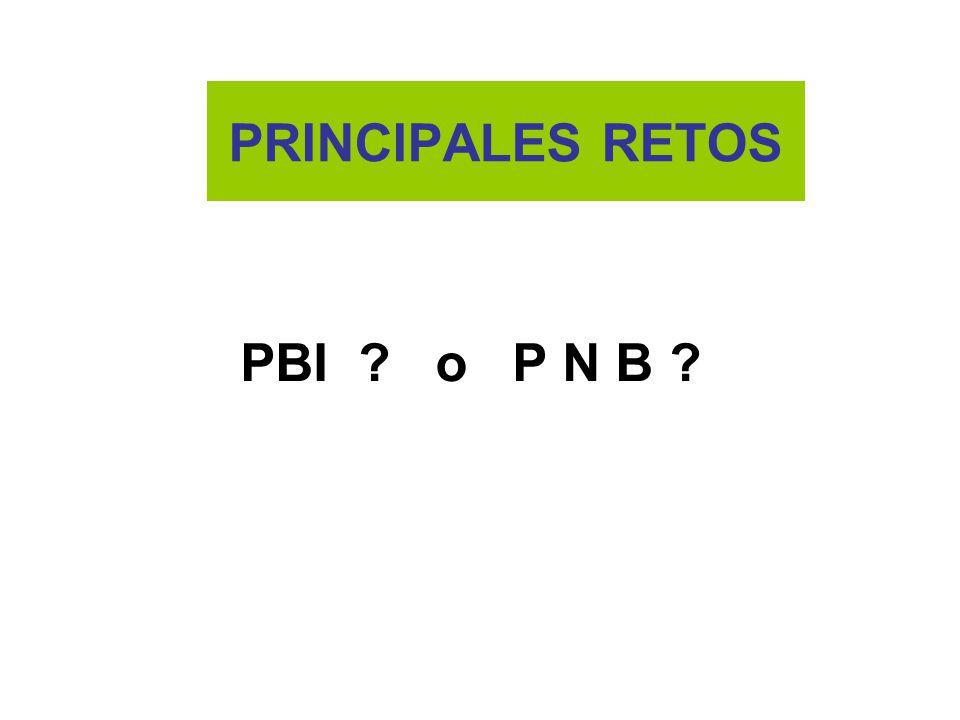 PRINCIPALES RETOS PBI o P N B