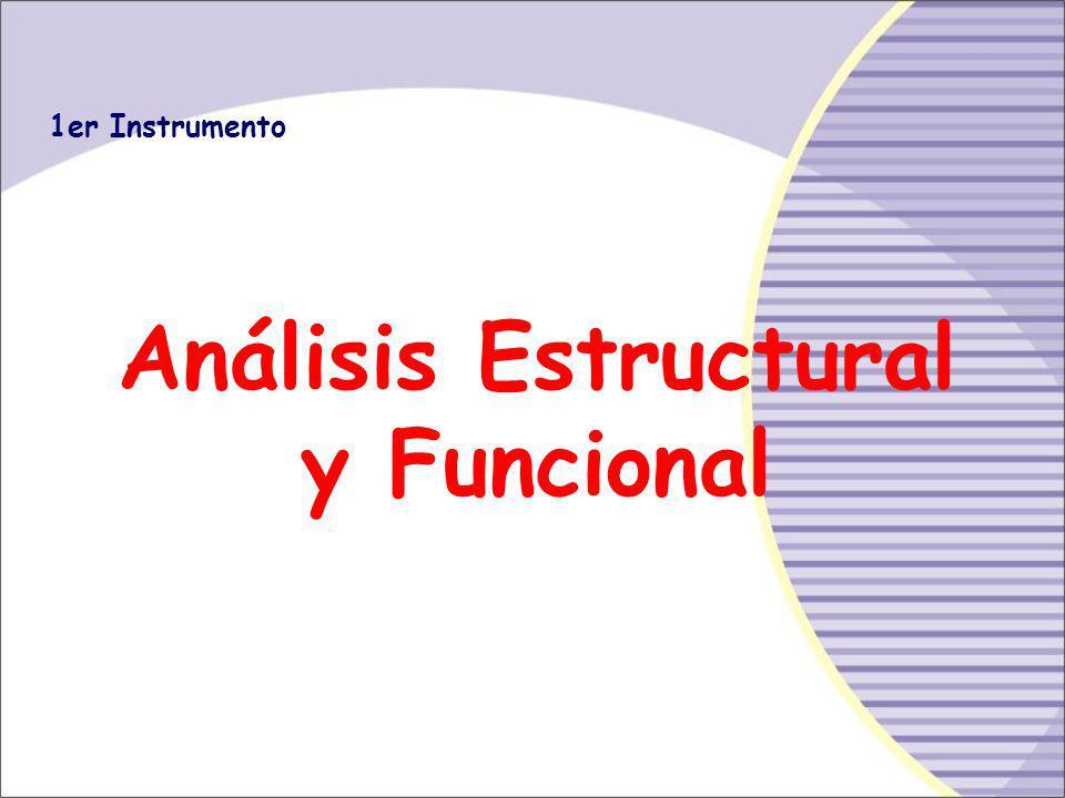 Análisis Estructural y Funcional