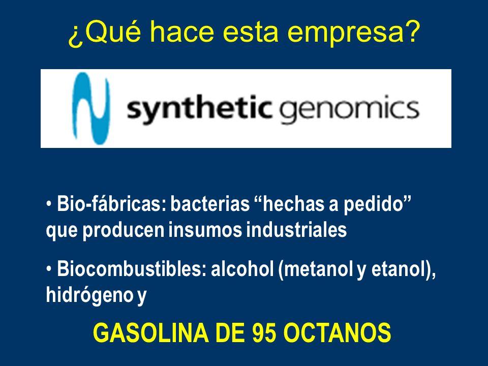 ¿Qué hace esta empresa GASOLINA DE 95 OCTANOS