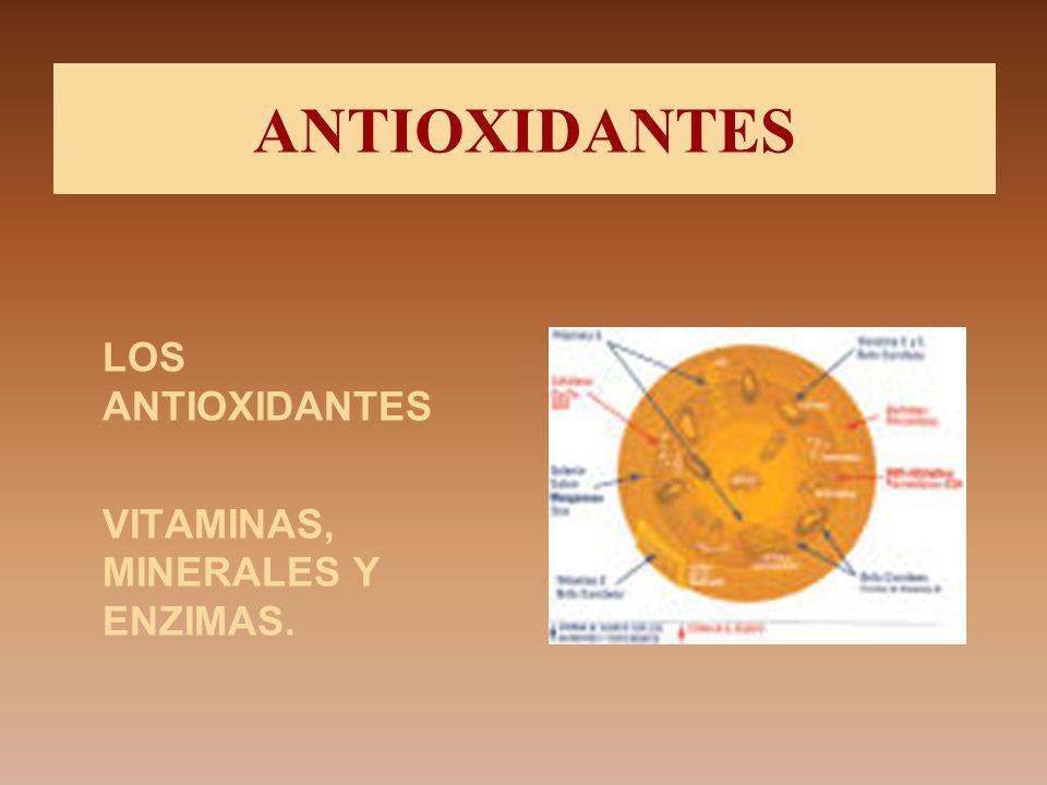 ANTIOXIDANTES LOS ANTIOXIDANTES VITAMINAS, MINERALES Y ENZIMAS.
