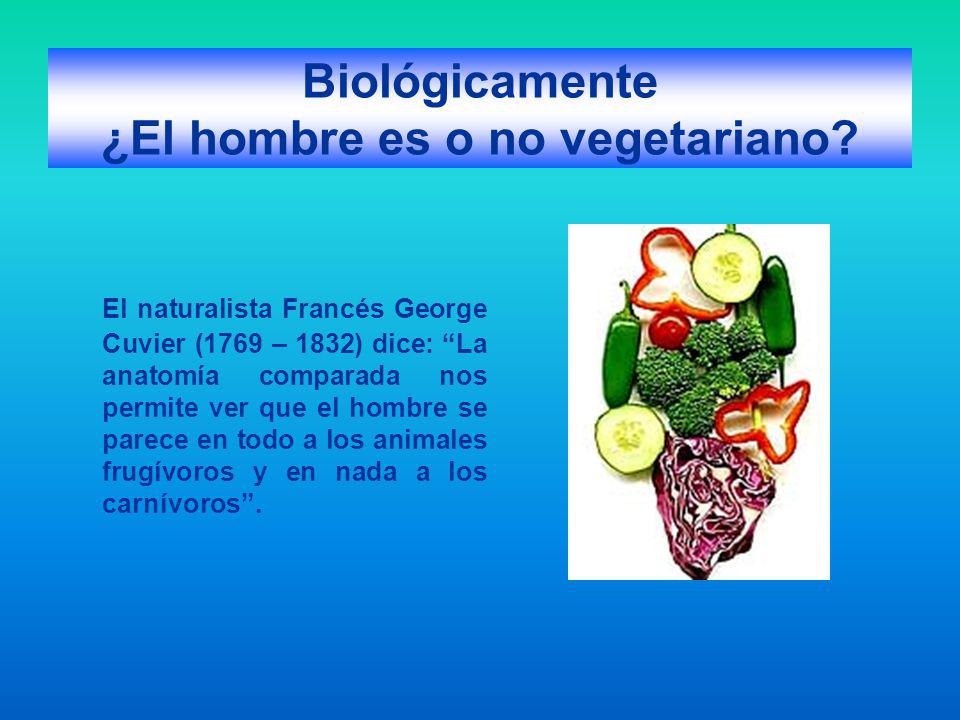 Biológicamente ¿El hombre es o no vegetariano