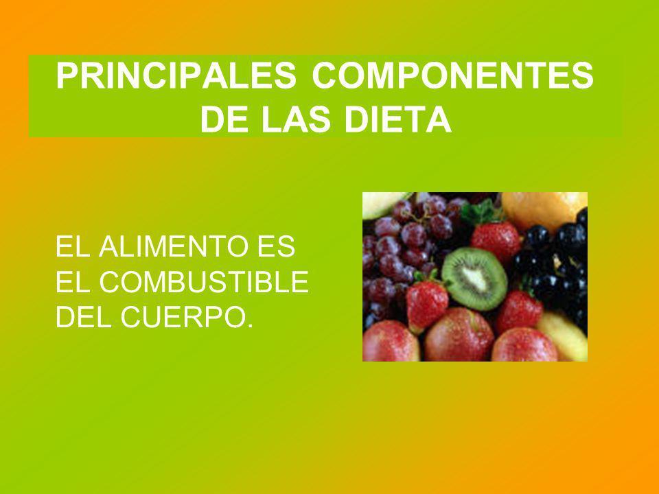 PRINCIPALES COMPONENTES DE LAS DIETA