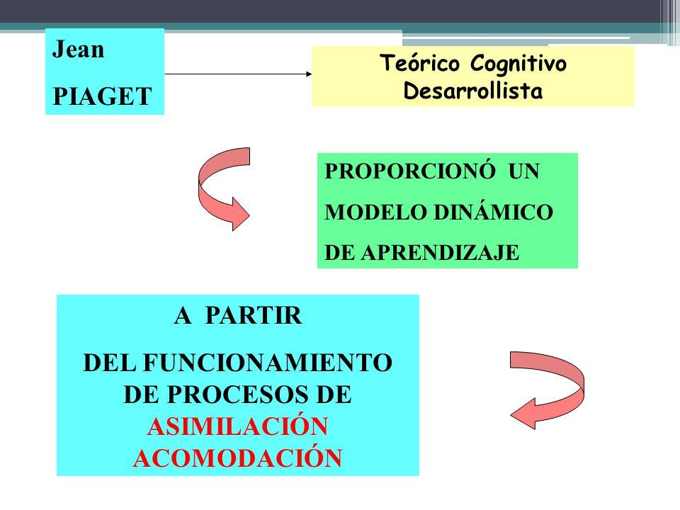A PARTIR DEL FUNCIONAMIENTO DE PROCESOS DE ASIMILACIÓN ACOMODACIÓN