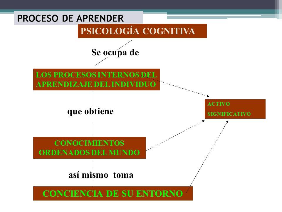 CONOCIMIENTOS ORDENADOS DEL MUNDO CONCIENCIA DE SU ENTORNO