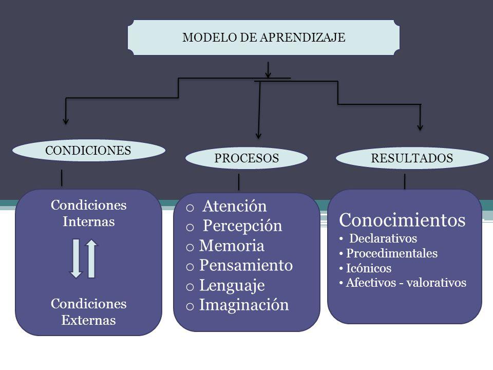 Conocimientos Atención Percepción Memoria Pensamiento Lenguaje