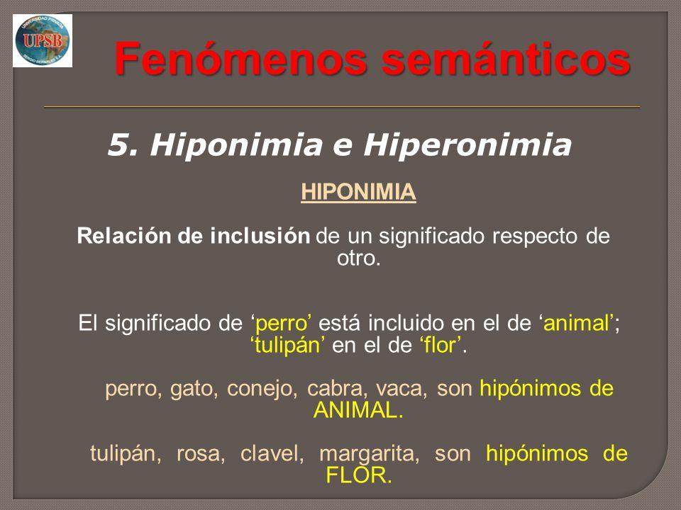 5. Hiponimia e Hiperonimia