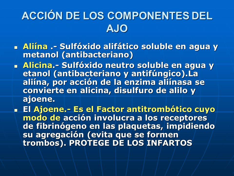 ACCIÓN DE LOS COMPONENTES DEL AJO