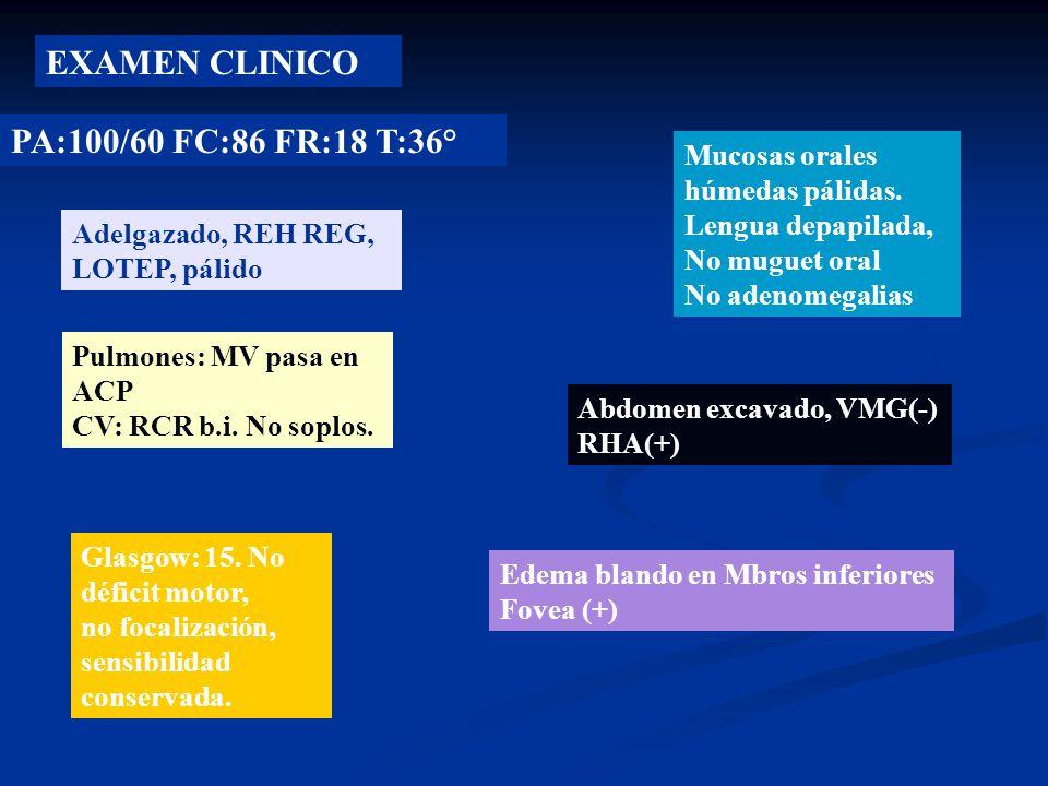 EXAMEN CLINICO PA:100/60 FC:86 FR:18 T:36°